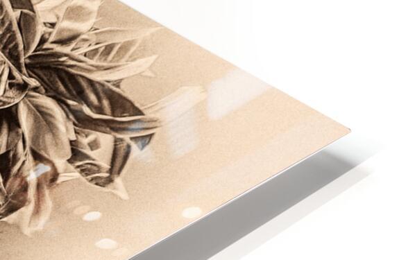Native American 4 HD Sublimation Metal print