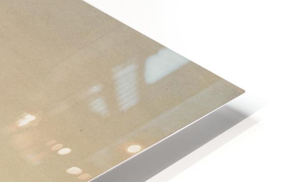 The Scalp-Lock HD Sublimation Metal print