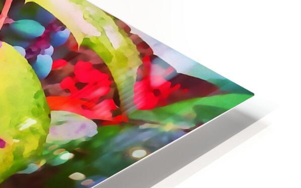 Color Burst HD Sublimation Metal print