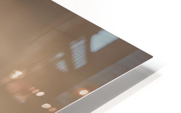 Buzzard HD Sublimation Metal print