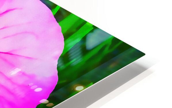 lady bug flower HD Sublimation Metal print