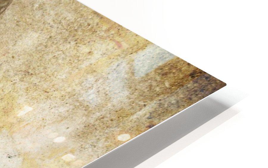 Strix Varia HD Sublimation Metal print