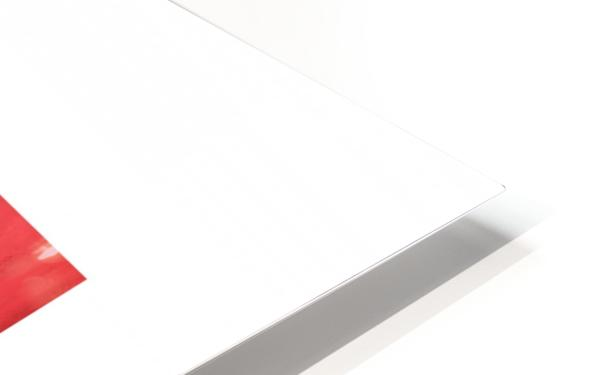 RBB HD Sublimation Metal print