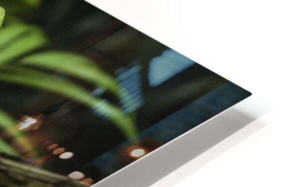 High Detail  Green Boa  HD Sublimation Metal print