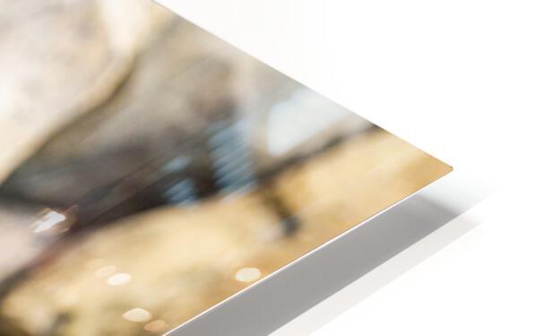 Connection  Lion  HD Sublimation Metal print