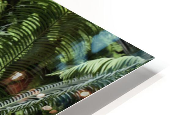 Trees Textures HD Sublimation Metal print