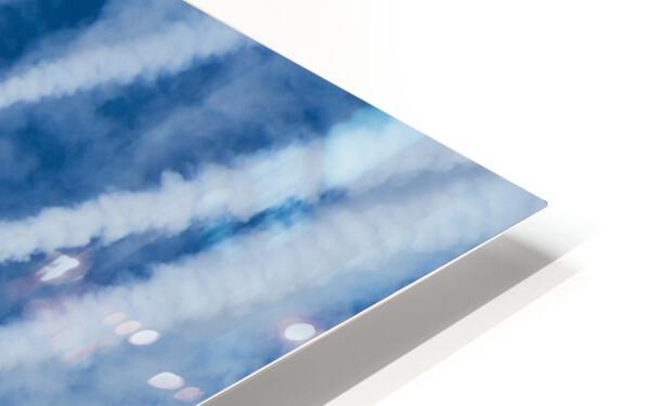 Snow Birds in Flight HD Sublimation Metal print
