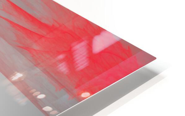 Perroquet  HD Sublimation Metal print