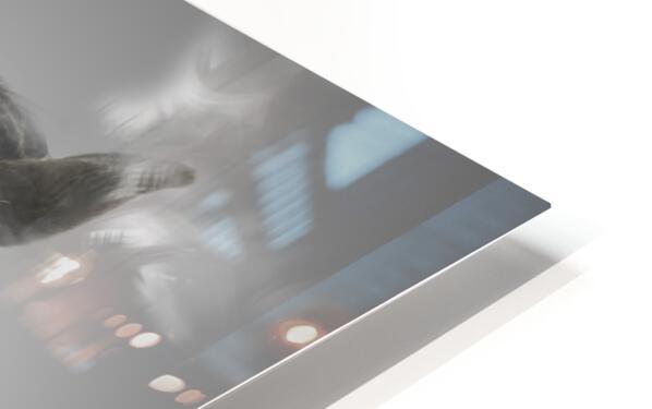 Cheval HD Sublimation Metal print