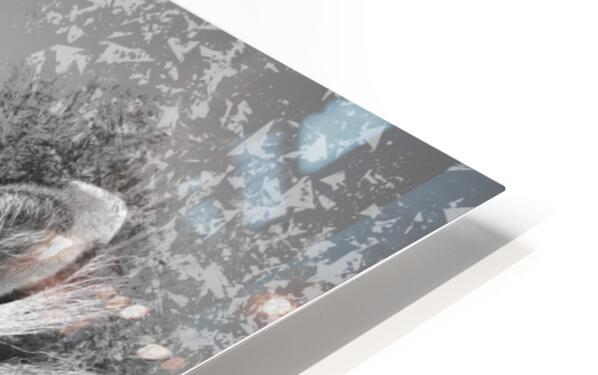 zebre 2 HD Sublimation Metal print