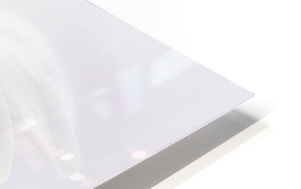 Anemone blanda HD Sublimation Metal print