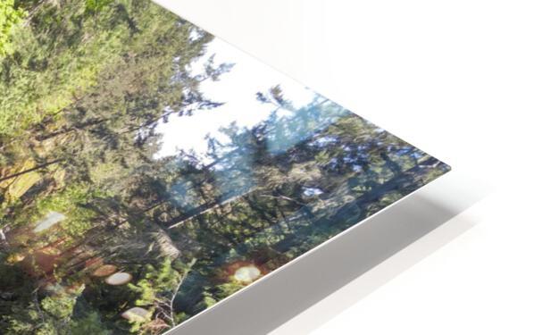 Sacred Deer HD Sublimation Metal print