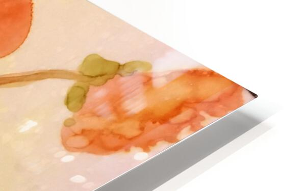 Orange Nasturiums HD Sublimation Metal print