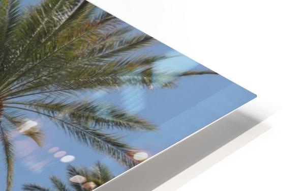 Date Garden Oasis HD Sublimation Metal print