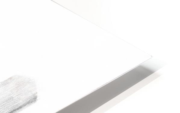TRANSFORM HD Sublimation Metal print
