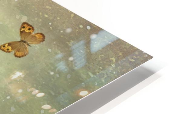 Butterflies Charmer HD Sublimation Metal print