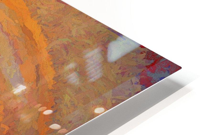 Pastar_140902_13094 HXSYV HD Sublimation Metal print