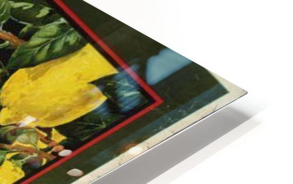 Buy lemons and make lemonade vintage poster HD Sublimation Metal print