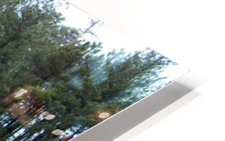 Peaceful HD Sublimation Metal print