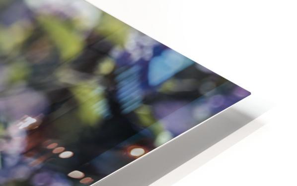 Exploration HD Sublimation Metal print