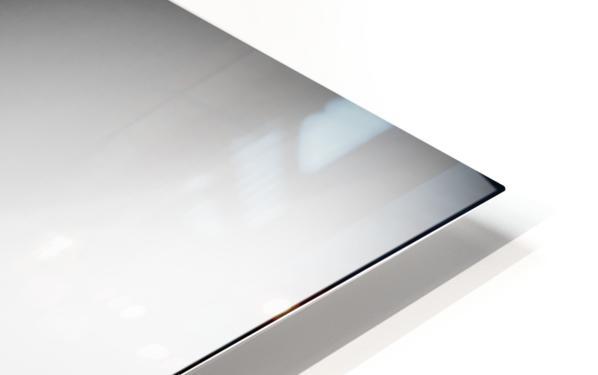 Evolution HD Sublimation Metal print