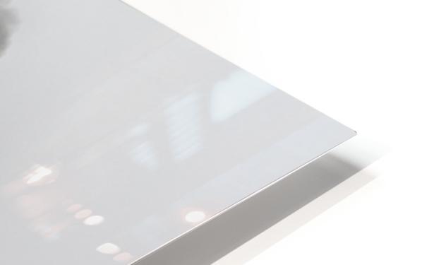 Little-Jumbo HD Sublimation Metal print