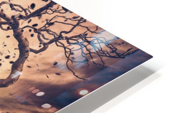 Rhapsody HD Sublimation Metal print