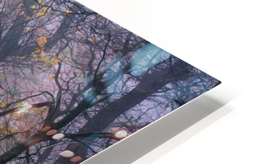 Walking the old path. HD Sublimation Metal print