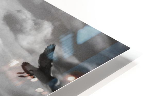 Soul Call HD Sublimation Metal print