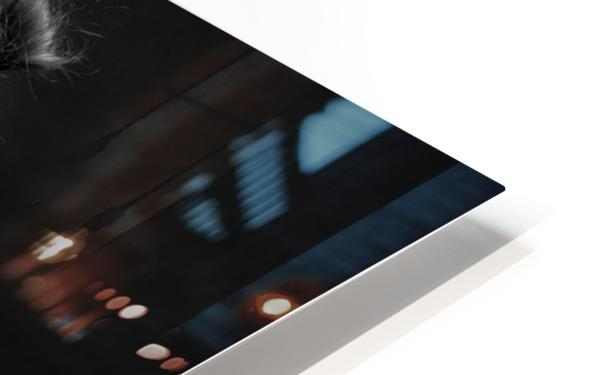 bodyscape HD Sublimation Metal print