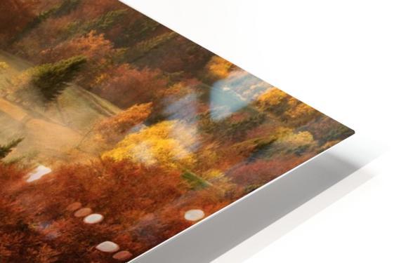 November's fog HD Sublimation Metal print