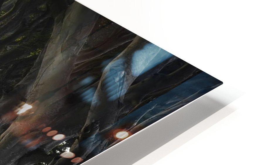DARK HEDGES HD Sublimation Metal print