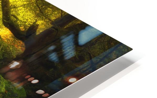 Land of Xanes HD Sublimation Metal print