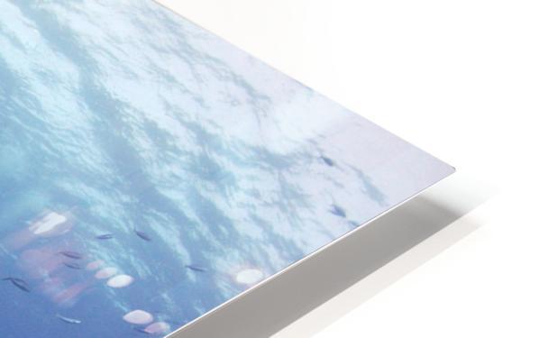 Giannis D wreck. HD Sublimation Metal print