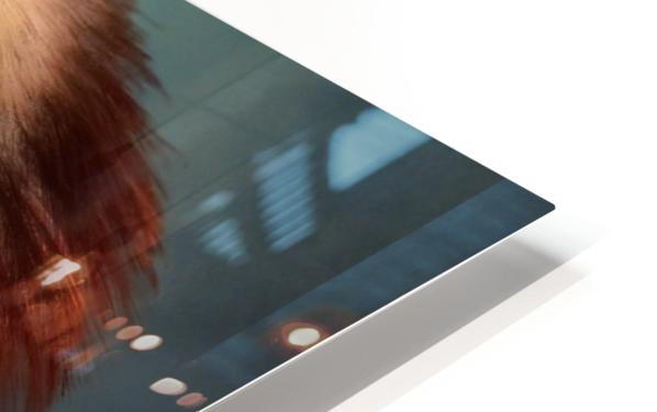 Jabrix HD Sublimation Metal print