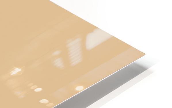 Bauhaus Nude HD Sublimation Metal print