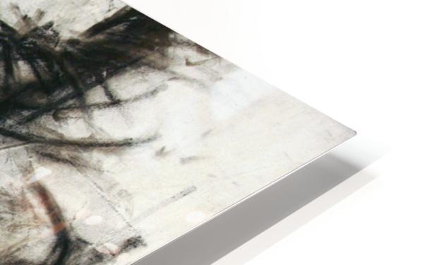 Muse 1 HD Sublimation Metal print