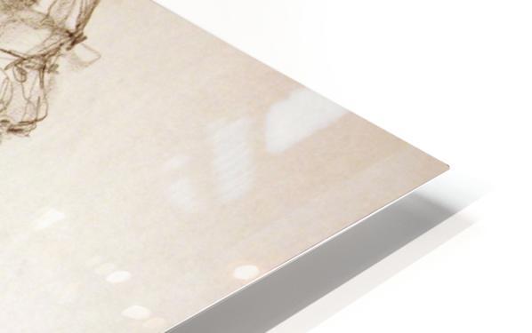 Female Profile Study HD Sublimation Metal print