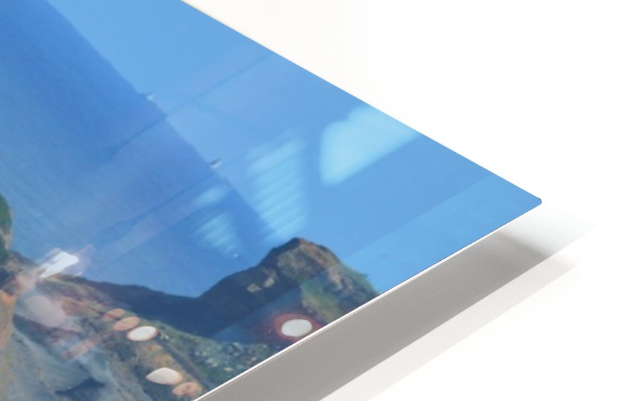 Baboon rock HD Sublimation Metal print