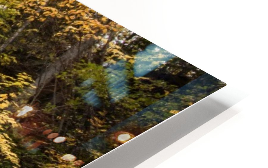 Colorful Mary Ann Falls HD Sublimation Metal print
