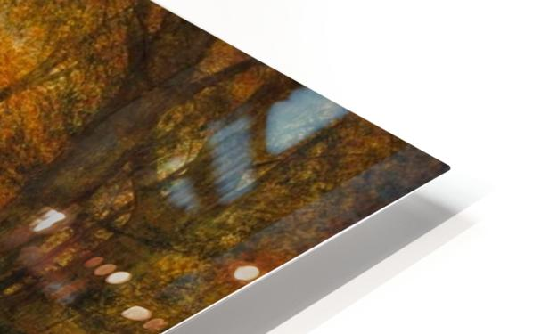 Detail from a forest HD Sublimation Metal print