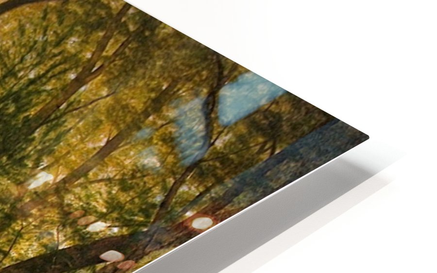 Rivers, Cottage Interiors and Ponds HD Sublimation Metal print