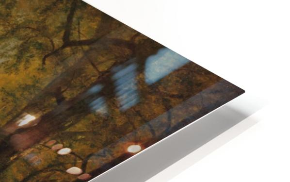 The Trout Pool HD Sublimation Metal print