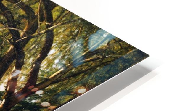 The Athenaeum HD Sublimation Metal print