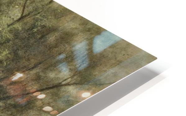Sheep Washing on Long Island HD Sublimation Metal print