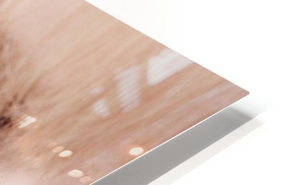 Closeup Of A Woman's Face HD Sublimation Metal print