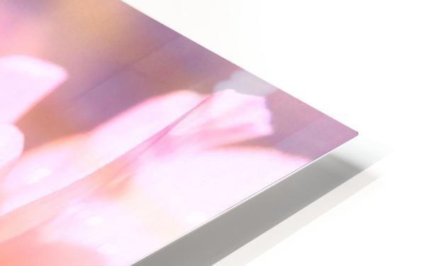 Rödklöver HD Sublimation Metal print