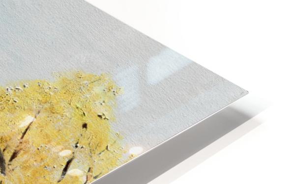 Golden Aged Barn -Washington - Red Silo  HD Sublimation Metal print
