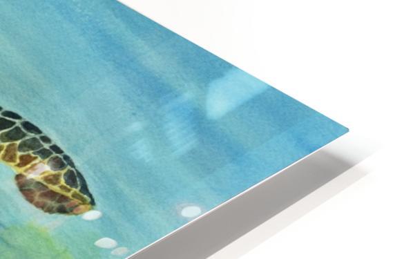 Sea Turtle HD Sublimation Metal print