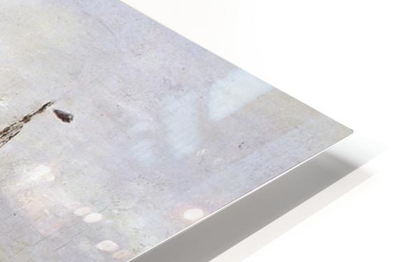 Arrival Of The Fleet Sun HD Sublimation Metal print